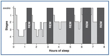 Sleep_graph_300