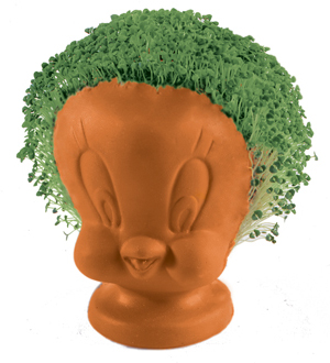 Tweety and Borak Obama Chia pets, your hair sprouts have got to wait